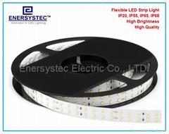 高亮度户外防水IP68 LED软灯条