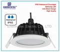 12w Waterproof LED downlight recessed ip65