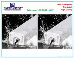 60W New generation IP65 led tri-proof lamp