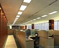 2015 New LED panel light high quality SMD2835 LED high brightness 600x300mm