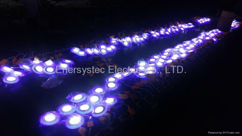 Double Color LED Panel Light, Dual Color White 12W+Blue 4W 14