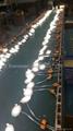 Double Color LED Panel Light, Dual Color White 12W+Blue 4W 11