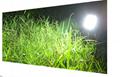 太陽能氾光燈 5