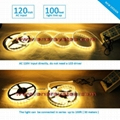 120V Flexible LED Strip Light, Dimmable by Wall Triac Dimmer, No Need LED Driver 4