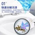 强力洁厕剂 2