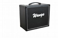 Wangs all tube guitar amplifier VT-10