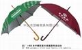 珠海雨傘 1
