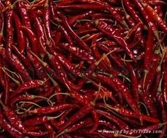 GreeNeem Spices