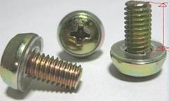 皇冠螺钉CHDS-M6-12