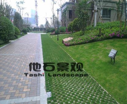 停車場現澆生態植草地坪 2