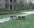停車場現澆生態植草地坪 3