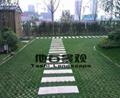 停車場現澆生態植草地坪 4