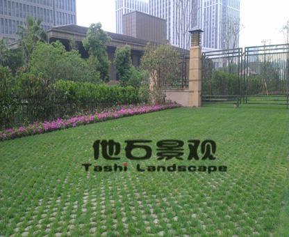 停車場現澆生態植草地坪 5