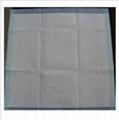 食品垫生产线(吸水(吸血)垫生产设备) 5