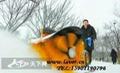 道路小型掃雪機