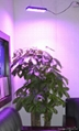 High power plant growth lamp 6