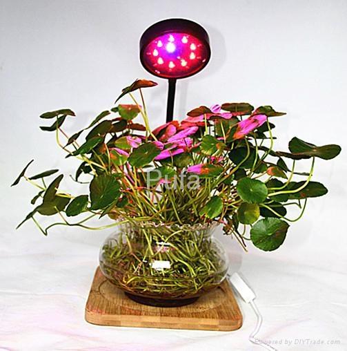LED plant lamp 10W 6
