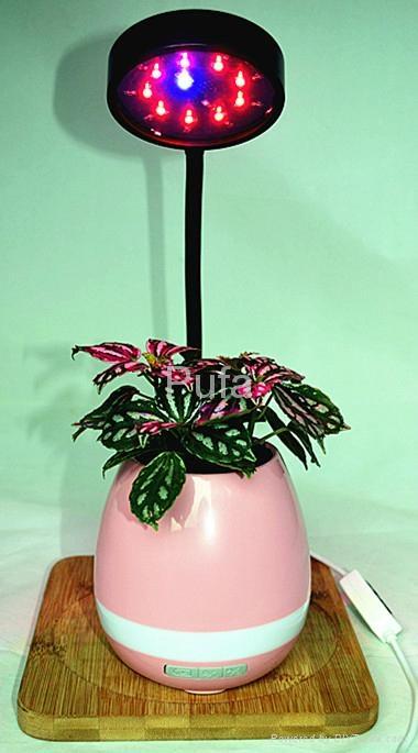 LED plant lamp 10W 7