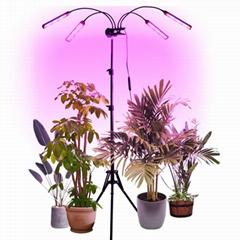 LED Grow Light Flexible Clip Lamp DC12V 3A 80W