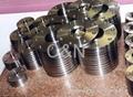 A182 F51 Flanges,F44 duplex steel