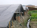 溫室大棚防滲膜