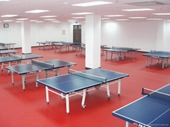Ping pong sport floor surface