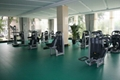 Gym/fitness sports surface floor