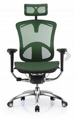 Ergohuman Office Mesh Manager Executive Chair