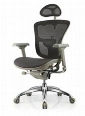 Ergonomic Ergohuman Mesh Office Chair