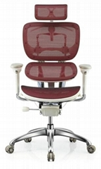 Mesh Office China Ergonomic Chair
