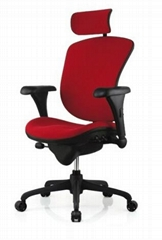 Ergonomic Ergohuman Fabric Office Chair