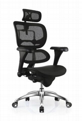 Ergonomic Mesh Office  China Ergohuman Chair