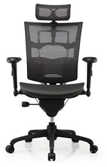 Ergonomic Executive Mesh Office Chair