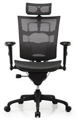 Ergonomic Executive Mesh Office Chair