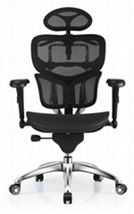 Ergohuman Office Mesh Manager Executive Chair