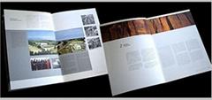 廣東廠家專業印刷海報、單張、折頁、畫冊