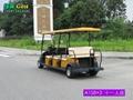 電動觀光車 5