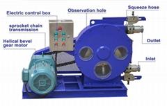 OEM CE hose pump for foam concrete block