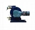 Customize hose pump for filter press