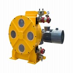 GH76-770B TBM Peristaltic Pump