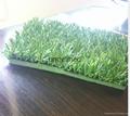 常州瑞弗免填充移动草坪
