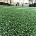 regalfill供應足球場填充環保空心顆粒