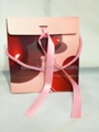 Pandora paper bag Valentine collections new version