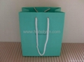 Tiffany paper bag_green colour