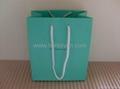 Tiffany paper bag_green colour