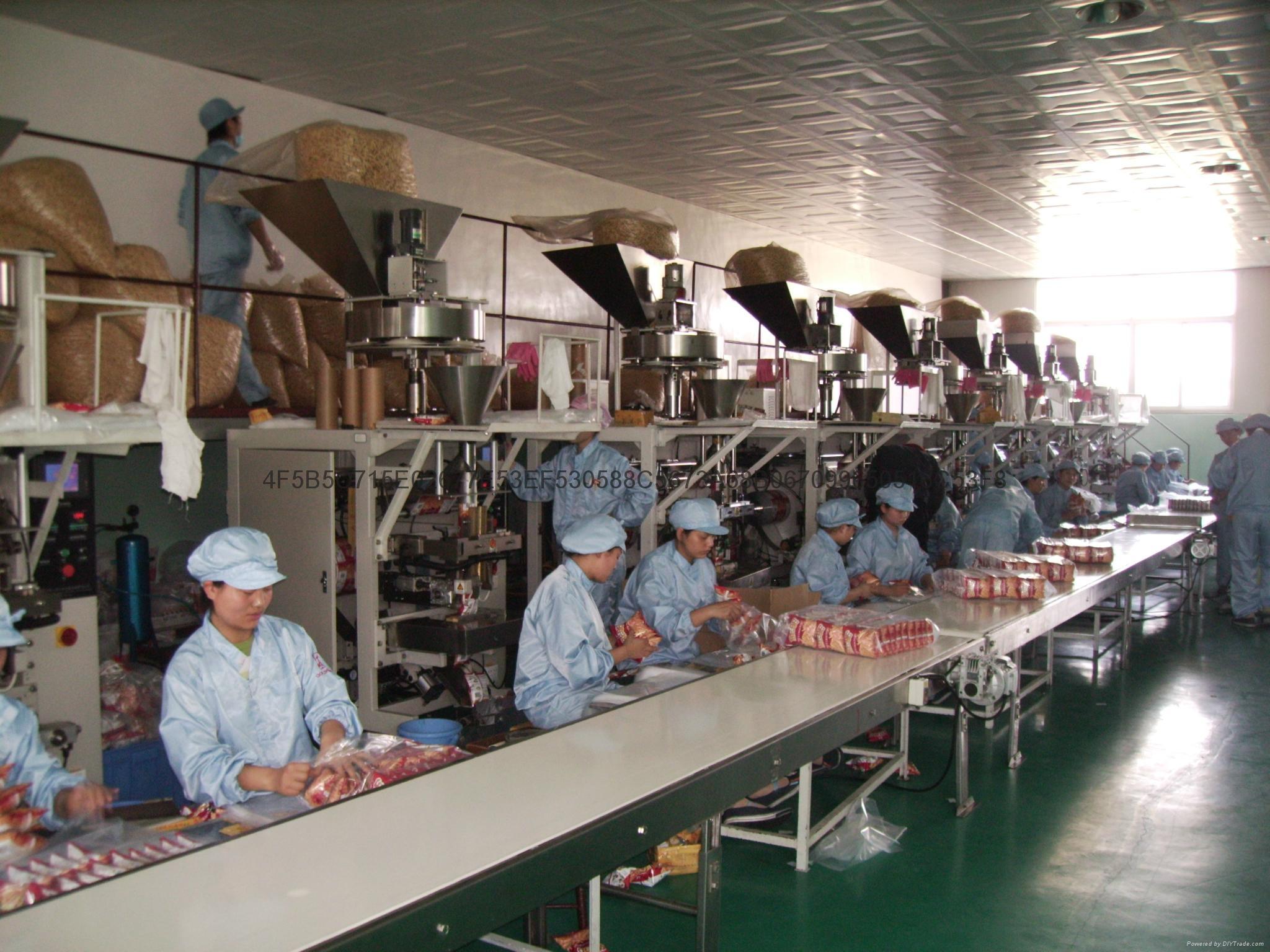食品瓜子包裝機 自動包裝機SK-220DT 4