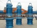 QZB系列潜水轴流泵 2