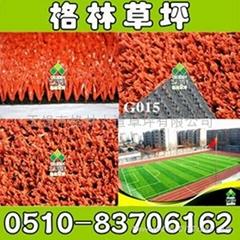 学校专用耐用环保足球草