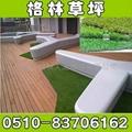 高品质景观人造草 1