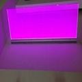 江西南昌廠家直銷小家電用LED背光源 4